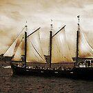 Tall Ship Silva by Scott Ruhs