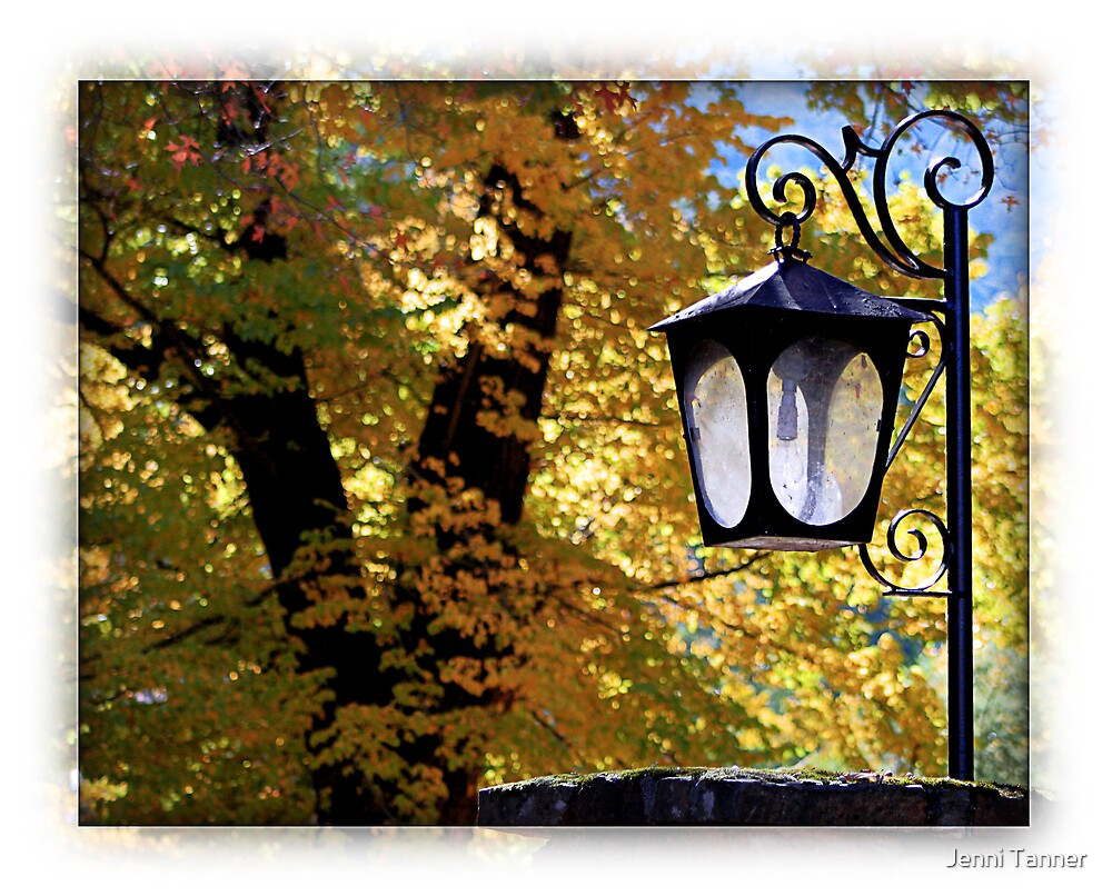 Lamp in Autumn by Jenni Tanner