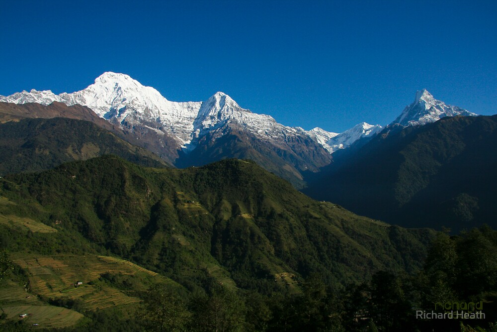 Annapurna Morning Glory by Richard Heath