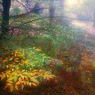 Elfwood by Ern Mainka