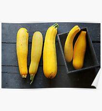 Raw Organic Yellow Zucchini Poster