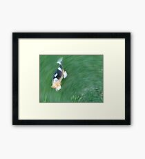 Life with a Puppy Framed Print