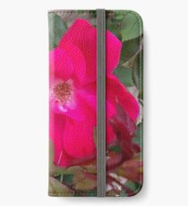 A little nature to brighten up the room iPhone Wallet/Case/Skin