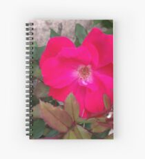 A little nature to brighten up the room Spiral Notebook