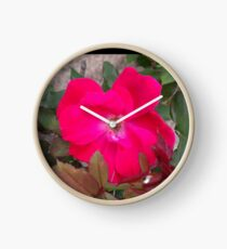 A little nature to brighten up the room Clock