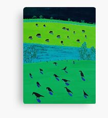 Black currawongs Canvas Print