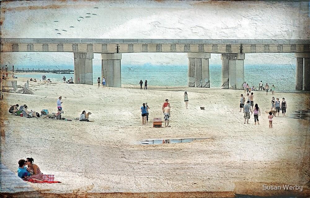 Beach Days  by Susan Werby