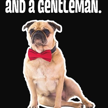Pug The Gentleman  by TMan74