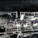 Silver Sax von BlueMoonRose