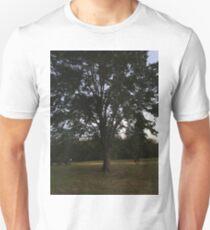 One Big Beautiful Tree Unisex T-Shirt