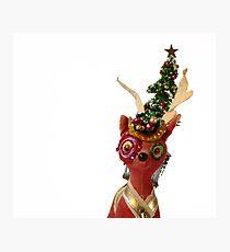 Holidaze Reindeer Photographic Print