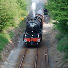steamtrain2 by dougie1