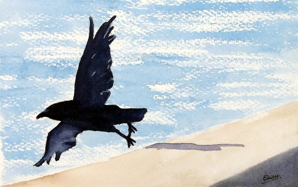 Fly Away by Pat  Elliott