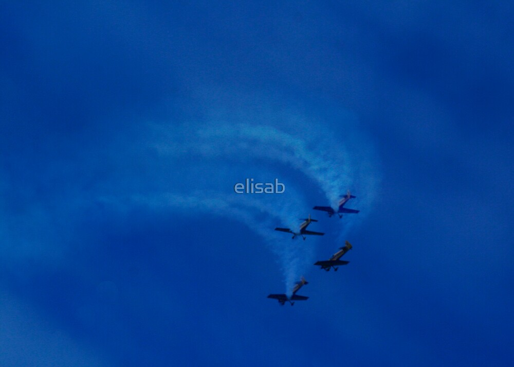 Fly High! by elisab