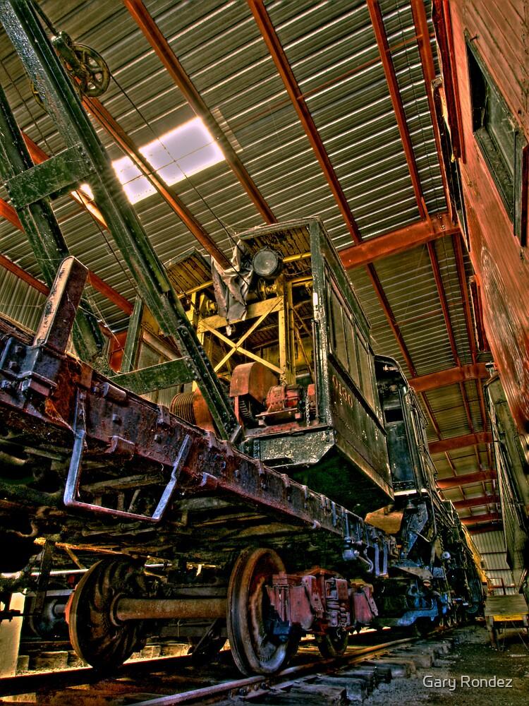 Crane Train by Gary Rondez