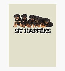 Sit Happens For Six Rottweiler Puppies Photographic Print
