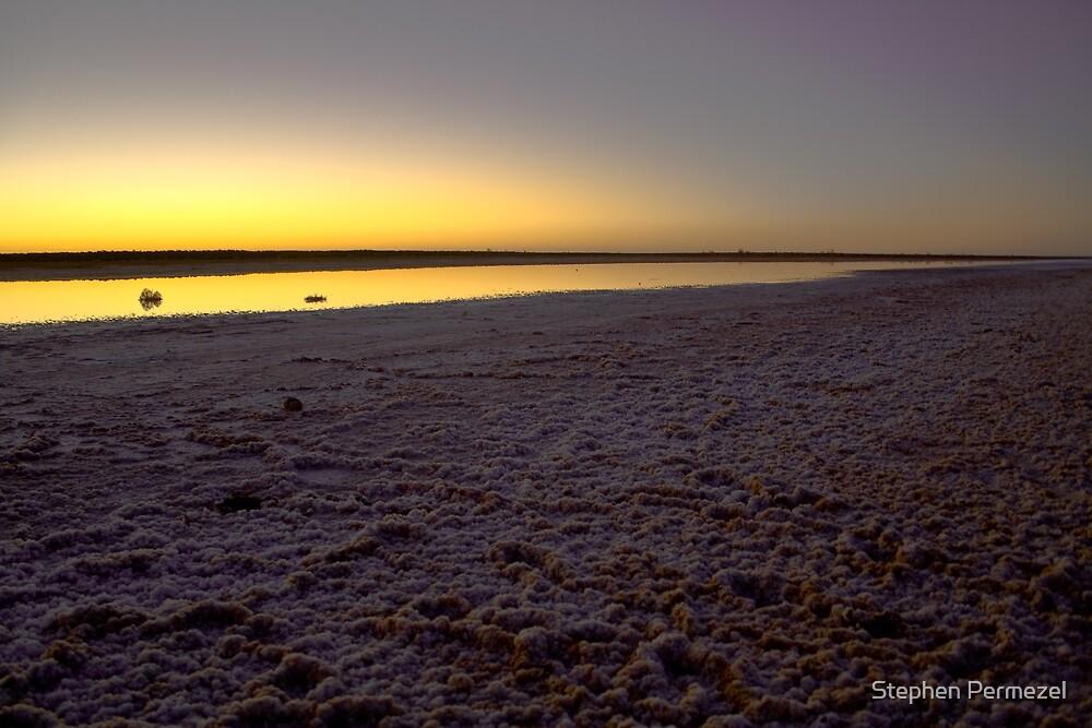 Lake Cadibarrawirracanna - South Australia by Stephen Permezel