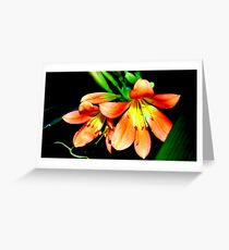 Flower 3 Greeting Card
