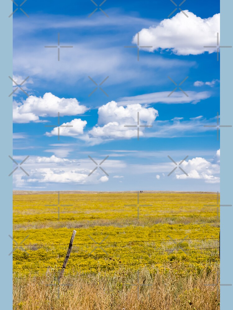 Yellow fields under blue cloudy sky by brians101