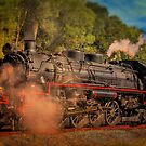 Age Of Steam 3 by wallarooimages