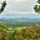 This Is Australia ... Canungra Bound by Michael Matthews