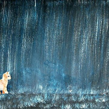 Cat In The Rain by jrivers