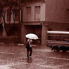 Sepia Rainy Day by John Wallace