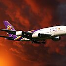 Thai Airlines by Stephen Smith