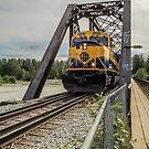The Alaska Railroad by John  Kapusta