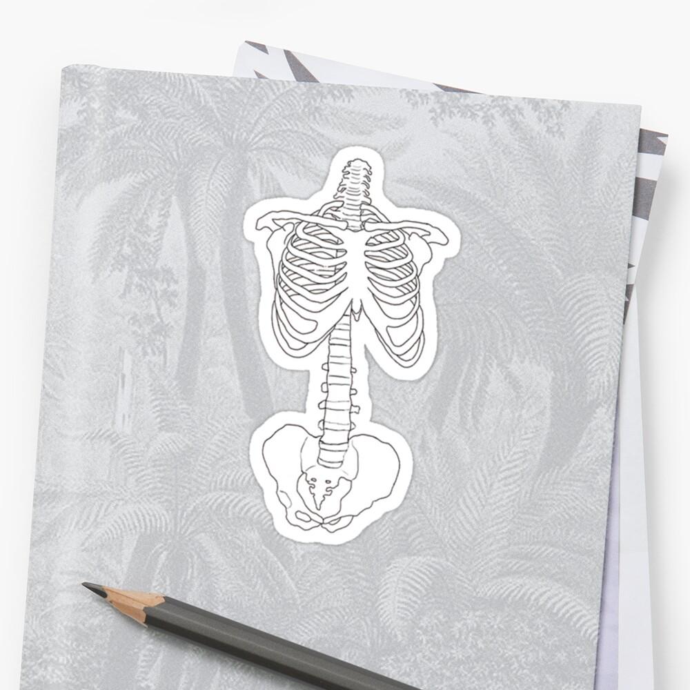 skeleton by odinsxn
