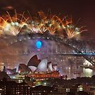 Sydney Fireworks 2014 by Dianne English