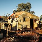 Goldfields043 by Colin White