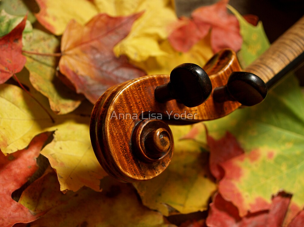 Maple Violin Scroll on Autumn Leaves by Anna Lisa Yoder
