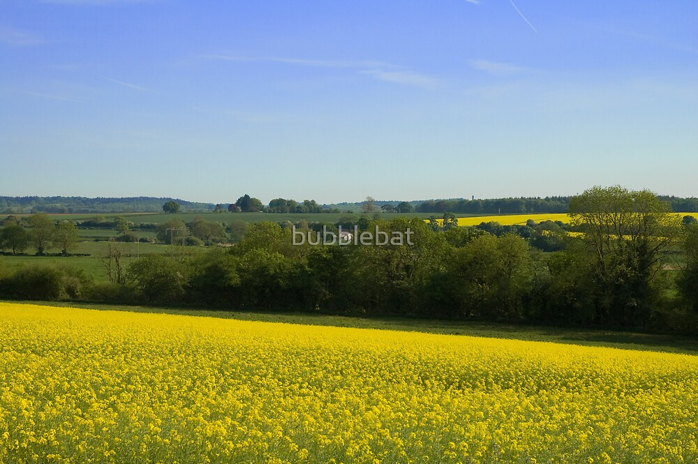 Dorset Countryside by bubblebat