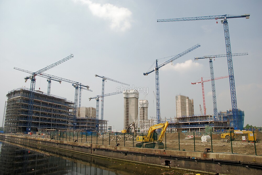 Cranes and more cranes by shakey