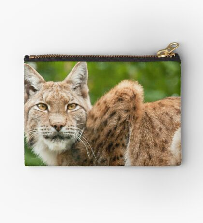 Golden eyes Studio Pouch