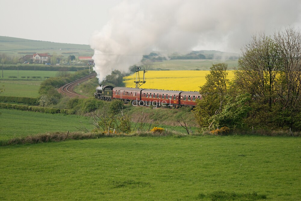 steam special again by dougie1