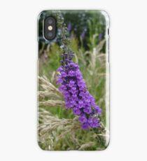 Purple Toadflax (Linaria purpurea) iPhone Case/Skin