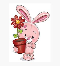 Cute Bunny Photographic Print