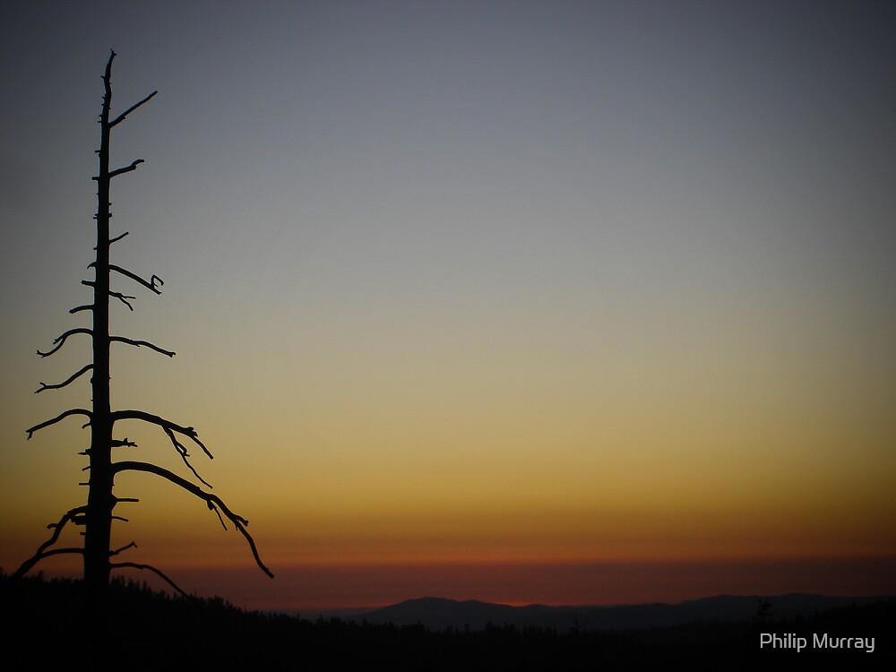 Burnt Sunset by Philip Murray
