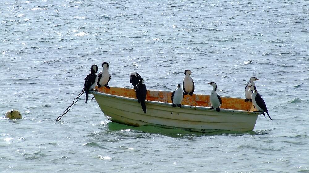 Rubadub dub 10 birds on a tub by SDJ1