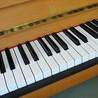 Piano Notes by SunriseRose