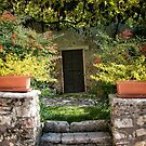 Italian Winery  by Judy Ann  Grant