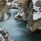 Cold winter in Fornant river by Patrick Morand