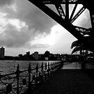 Unter der Brücke von Evita
