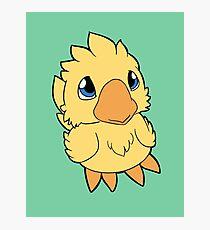 Chocobo Chick ~ Light Yellow Photographic Print