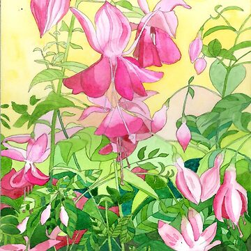 Pink Fuchsia Flowers Original watercolour painting by esvb