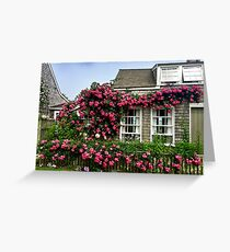Roses in Nantucket Greeting Card