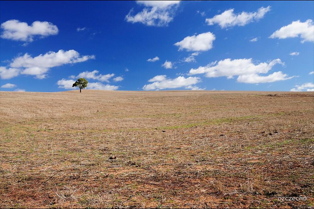Adelaide Hills by ozczecho