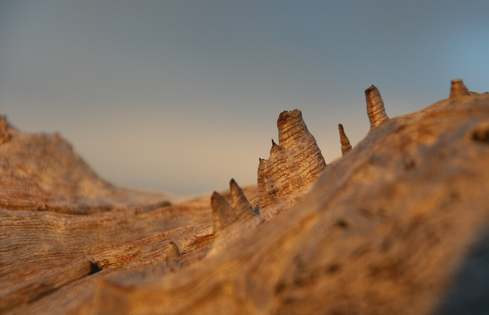 Topographical by Erial